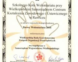 dyplom wolontariat 2016